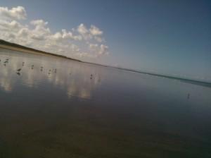 plage accueil